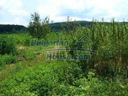 938:1 - A perspective plot of land in Bulgarian village near Gabrovo