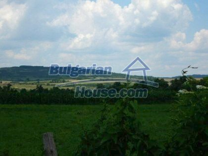 938:6 - A perspective plot of land in Bulgarian village near Gabrovo