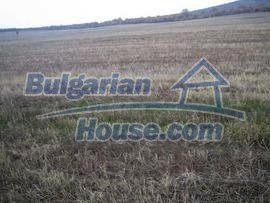 2798:1 - Invest in Bulgarian land near Harmanli
