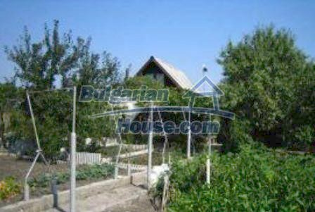 3599:8 - Buy Bulgarian house with nise maintained garden in Haskovo regio