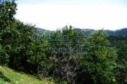 3779:6 - Bulgarian property in a tiny and calm hamlet, Kardzhali region