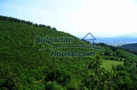 3815:6 - Two storey loveley bulgarian house build on the top of beautiful