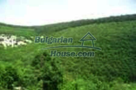 3818:5 -  Lovely bulgarian property in a mountain near by Kardjali
