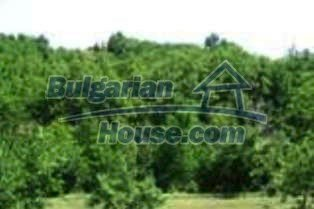 3854:3 - Rural bulgarian house for sale in Kardzhali region