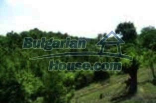3854:5 - Rural bulgarian house for sale in Kardzhali region