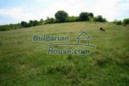 4118:1 - Rural bulgarian property land near Haskovo