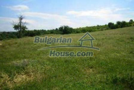 4118:2 - Rural bulgarian property land near Haskovo