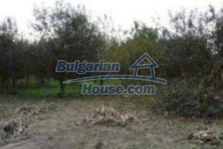 4703:2 - Rural land bulgarian property investment