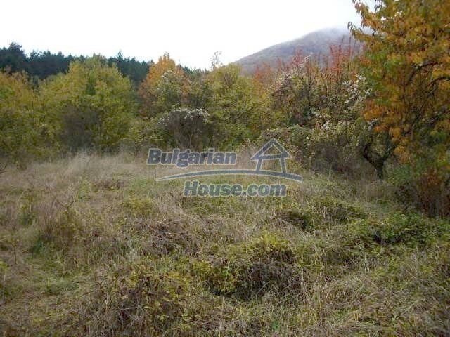 5195:3 - Plot of bulgarian land near highway