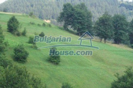 5354:3 - A comprehensive plot of land in Bulgarian countryside