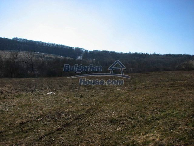 5594:3 - Plots of Bulgarian land for sale close to Lovech