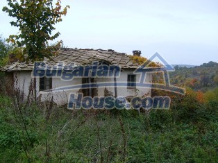 6234:2 - Two bulgarian properties with huge yard for sale near to Ivailov