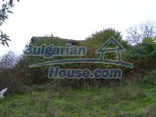 6234:5 - Two bulgarian properties with huge yard for sale near to Ivailov
