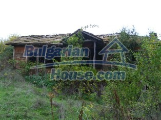 6234:6 - Two bulgarian properties with huge yard for sale near to Ivailov