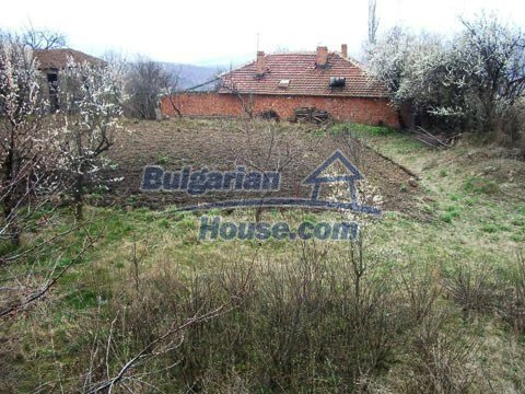 6483:10 - We recommend purchasing in this bulgarian house. It is good offe