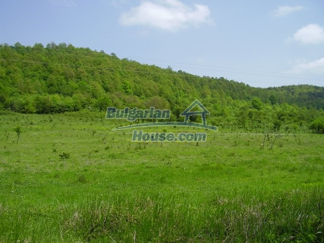 7029:1 - Agricultural bulgarian land in the region of Lovech