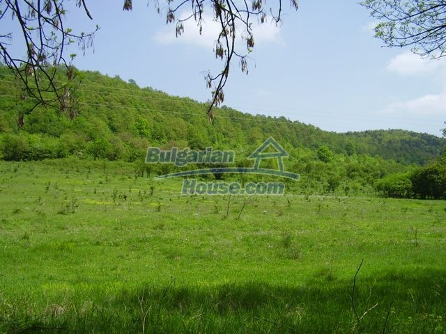 7029:4 - Agricultural bulgarian land in the region of Lovech