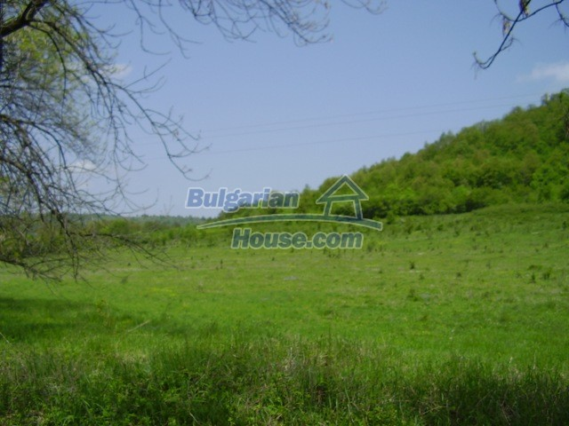 7029:6 - Agricultural bulgarian land in the region of Lovech