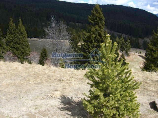 7074:1 - Nice plot of bulgarian land near Pamporovo good investment