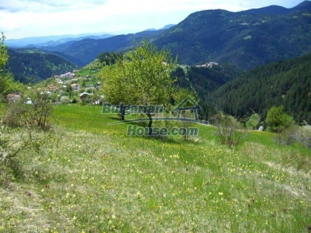 7113:1 - Buy Bulgarian large plot of land near Pamporovo