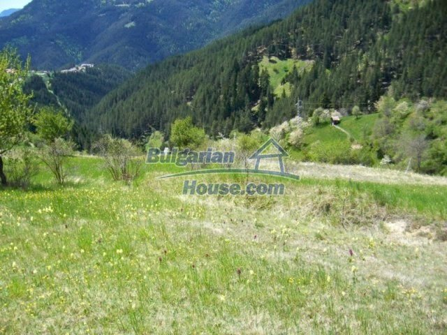 7113:2 - Buy Bulgarian large plot of land near Pamporovo