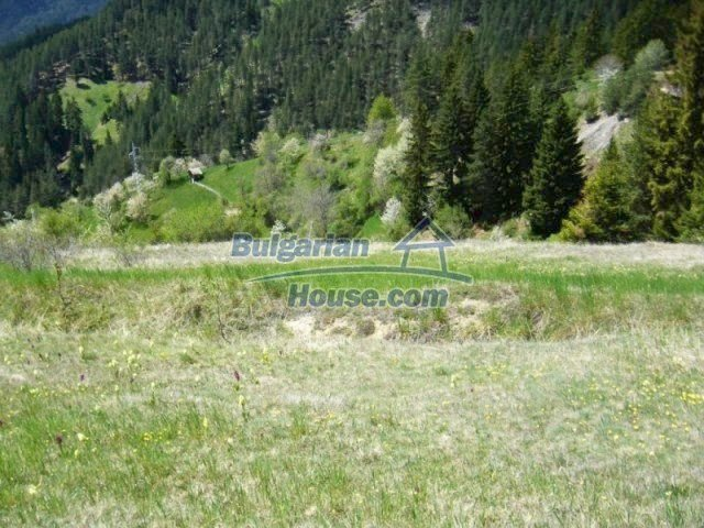 7113:3 - Buy Bulgarian large plot of land near Pamporovo