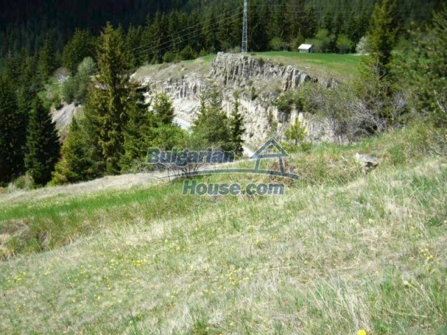7113:4 - Buy Bulgarian large plot of land near Pamporovo