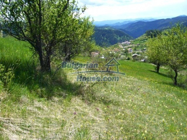 7113:6 - Buy Bulgarian large plot of land near Pamporovo