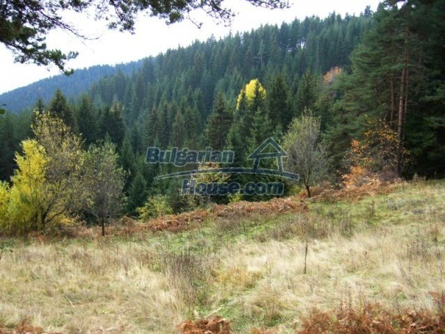 7122:3 - Invest in big plot of bulgarian land close to Pamporovo ski reso