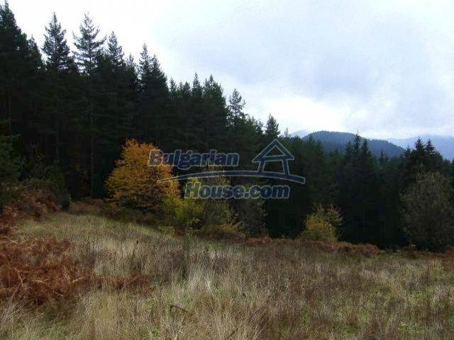 7122:4 - Invest in big plot of bulgarian land close to Pamporovo ski reso