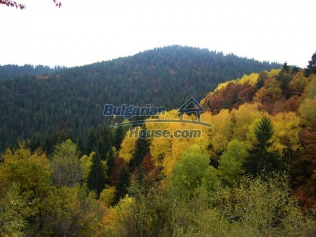7122:5 - Invest in big plot of bulgarian land close to Pamporovo ski reso