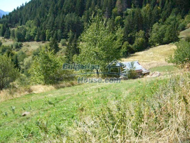 7224:1 - Plot of Bulgarian land 18 km away from Pamporovo