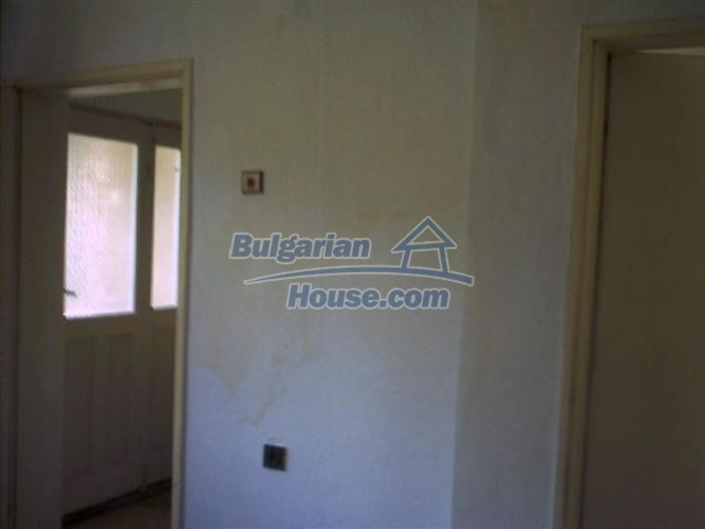 7419:5 - Nice Bulgarian property house in Dobrich region