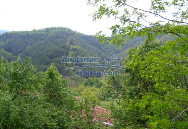 3614:4 - House for sale in Rhodopy Mountain