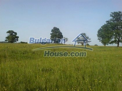 7923:1 - plots of Bulgartian bulgarian land in Lovech district