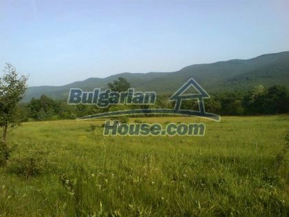 7923:3 - plots of Bulgartian bulgarian land in Lovech district