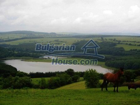 8001:1 - 3 huge plots of bulgarian land for investment on reasonable pric