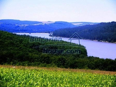 8001:5 - 3 huge plots of bulgarian land for investment on reasonable pric