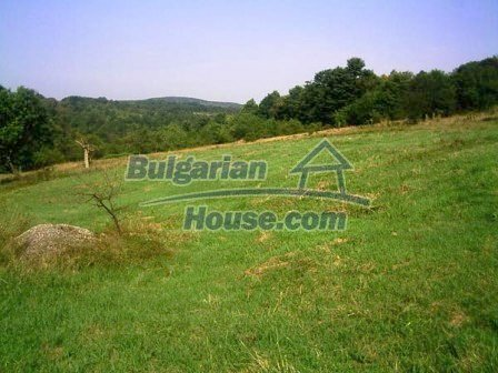 8253:3 - Do not miss this good opportunity to invest in plot of bulgarian