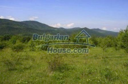 8253:4 - Do not miss this good opportunity to invest in plot of bulgarian