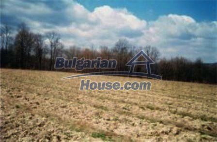 8253:6 - Do not miss this good opportunity to invest in plot of bulgarian