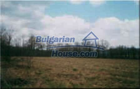 8253:8 - Do not miss this good opportunity to invest in plot of bulgarian