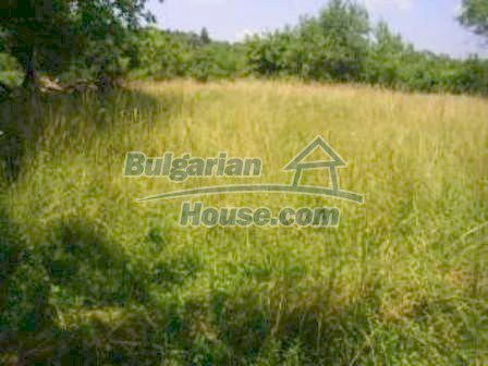 8253:1 - Do not miss this good opportunity to invest in plot of bulgarian