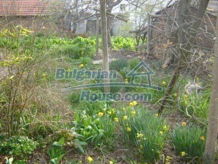 8586:9 - Small and cheap bulgarian house in a charming village near Nova