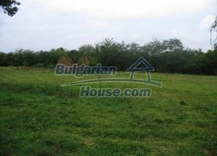 8604:5 - House with big yard- 4000sq.m