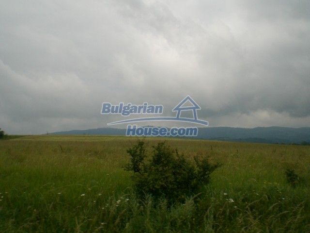 8889:1 - Cheap bulgarian land in Veliko Tyrnovo region