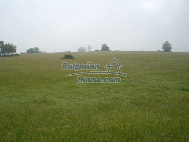 8889:2 - Cheap bulgarian land in Veliko Tyrnovo region