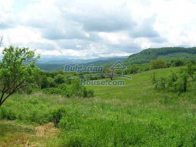 8892:1 - Cheap plot of bulgarian land for sale in Elena