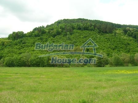 8892:2 - Cheap plot of bulgarian land for sale in Elena