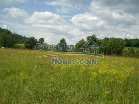 8913:1 - Bulgarian land for sale near Elena Veliko Tyrnovo